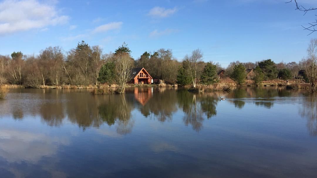 Stafford moor fishery image