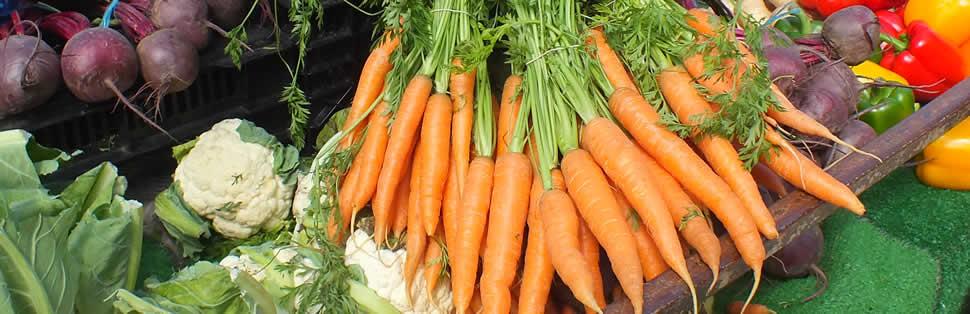 Tavistock Farmers Market